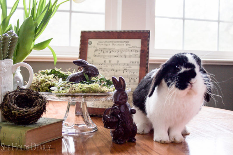 Easy Easter Terrarium by She Holds Dearly