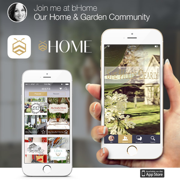 bHome App and a Giveaway