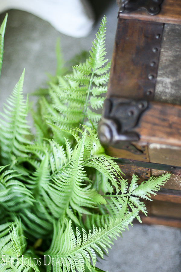 Ferns and steamer trunk for summer porch decor
