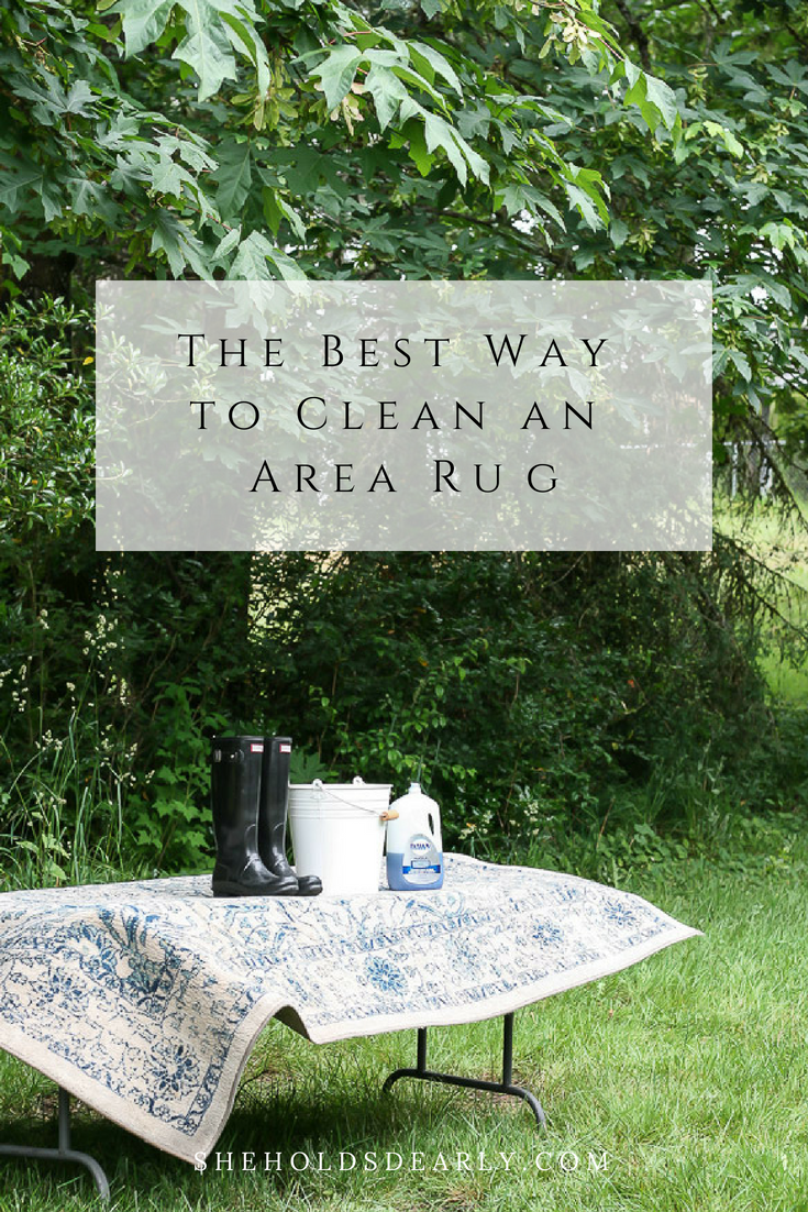 Step By Tutorial On Effective Diy Rug Cleaning Process