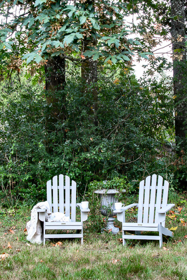 Cheap Adirondack Chairs by sheholdsdearly.com
