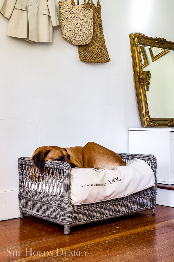 Custom Dog Bed Ideas by sheholdsdearly.com