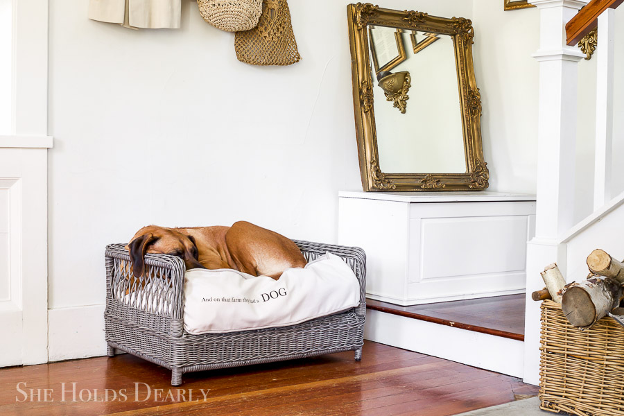 Make a DIY Dog Bed by sheholdsdearly.com