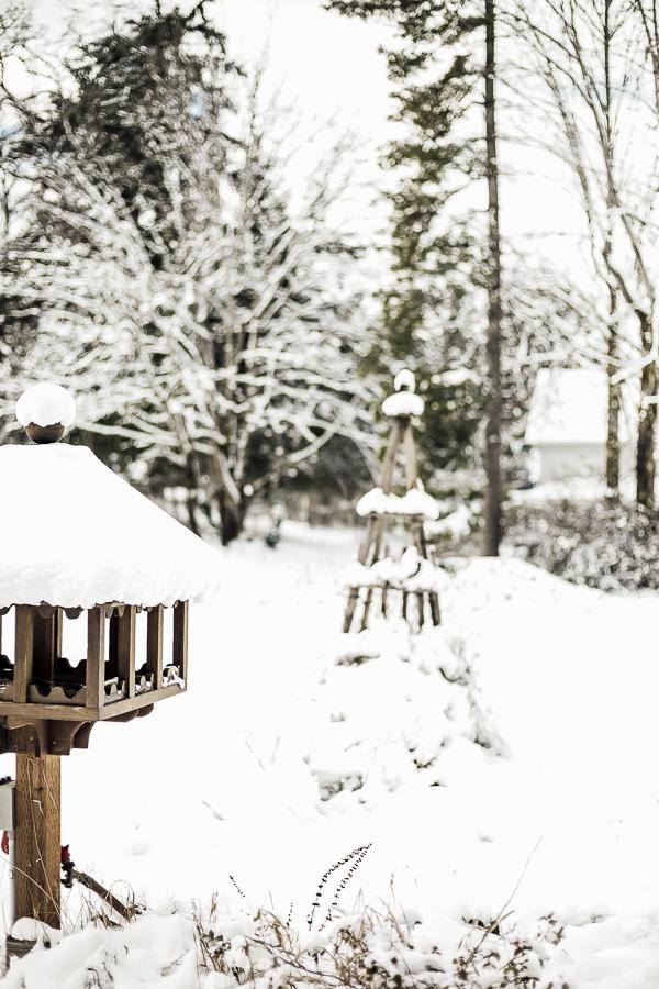 Farmlife Wintertime