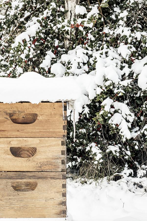 Winterizing the Farm by sheholdsdearly.com