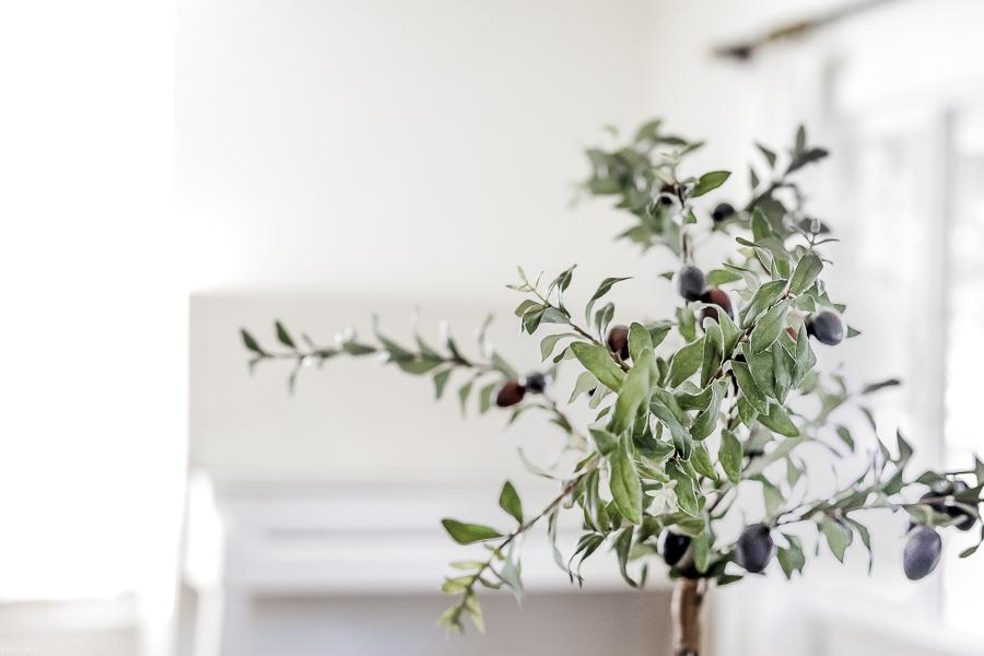 Easy Olive Tree Topiary by sheholdsdearly.com