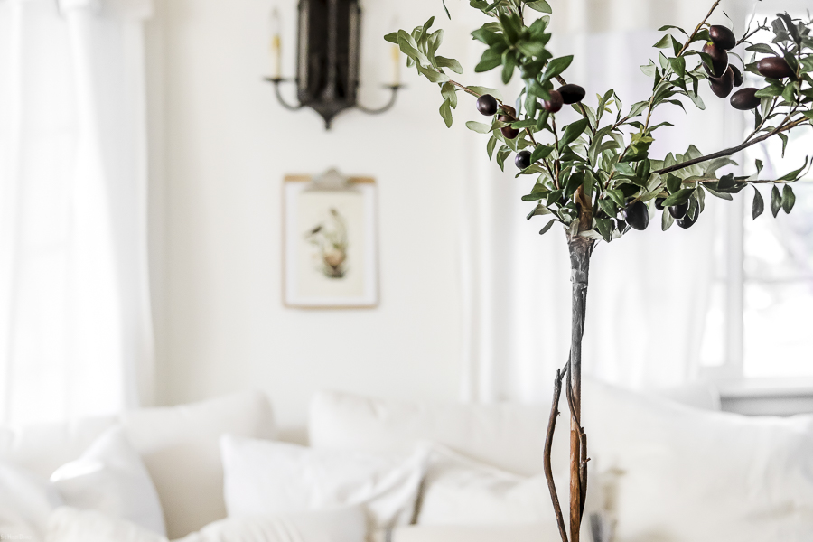 How to Make an Olive Tree Topiary by sheholdsdearly.com