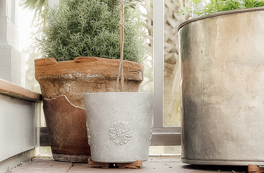 Faux Concrete Planter with Other Pots by sheholdsdearly.com