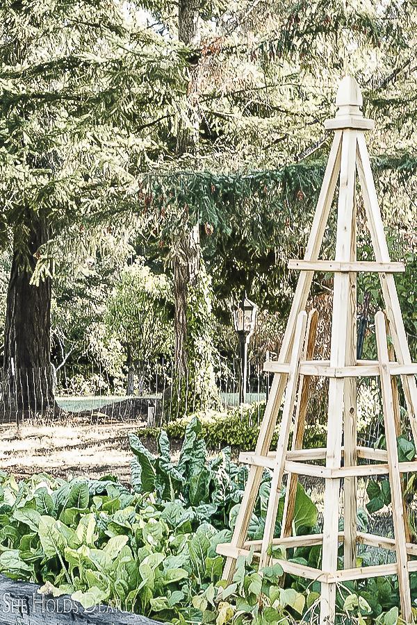 How to Building Garden Pyramids by sheholdsdearly.com