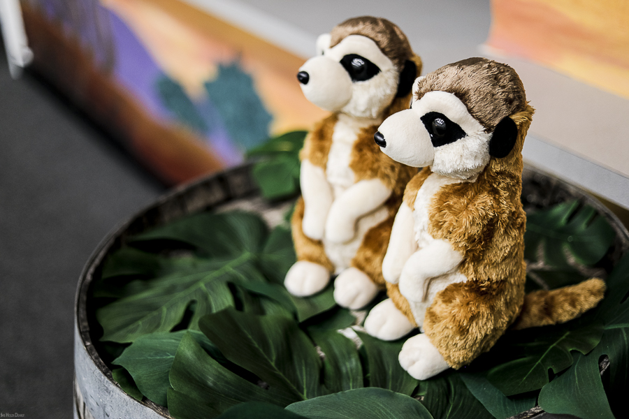 Stuffed Meerkats