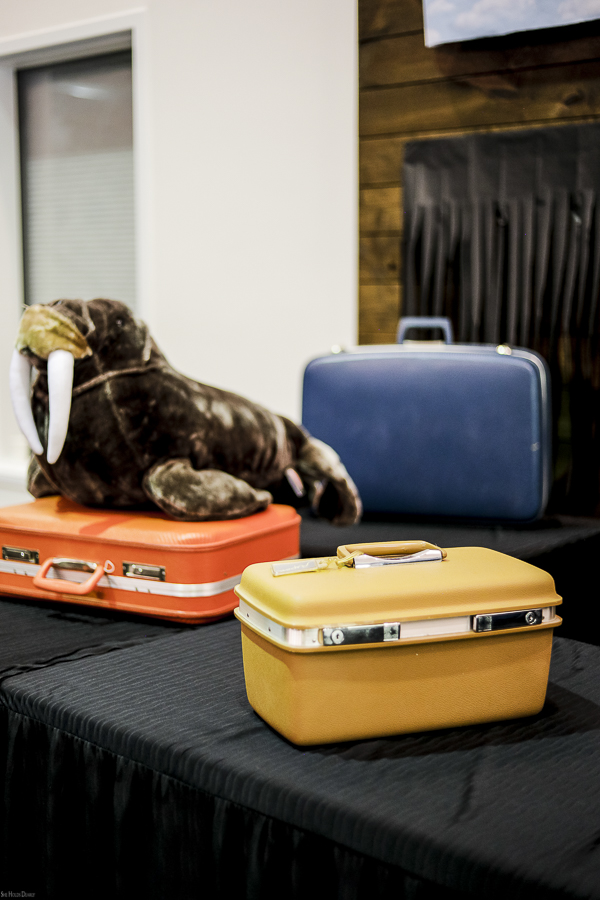 Vintage Suitcases by sheholdsdearly.com