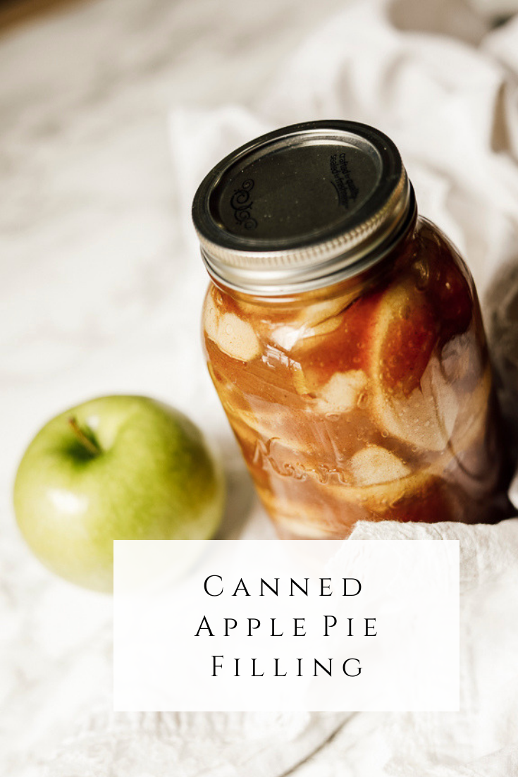 Canned Apple Pie Filling by sheholdsdearly.com