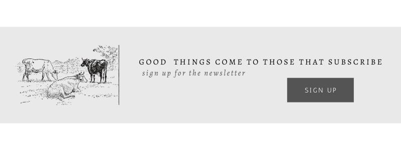She Holds Dearly Design Blog