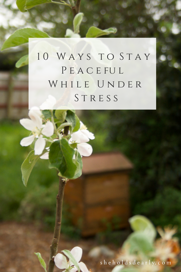 Ways to Stay Peaceful Under Stress by sheholdsdearly.com