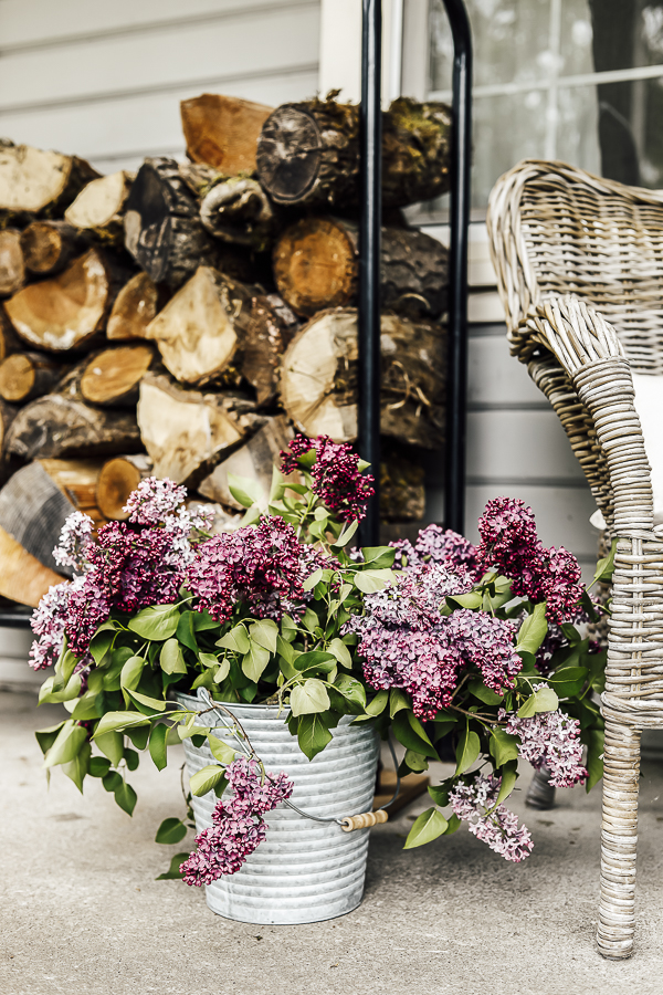 Keep Lilacs from Wilting by sheholdsdearly.com