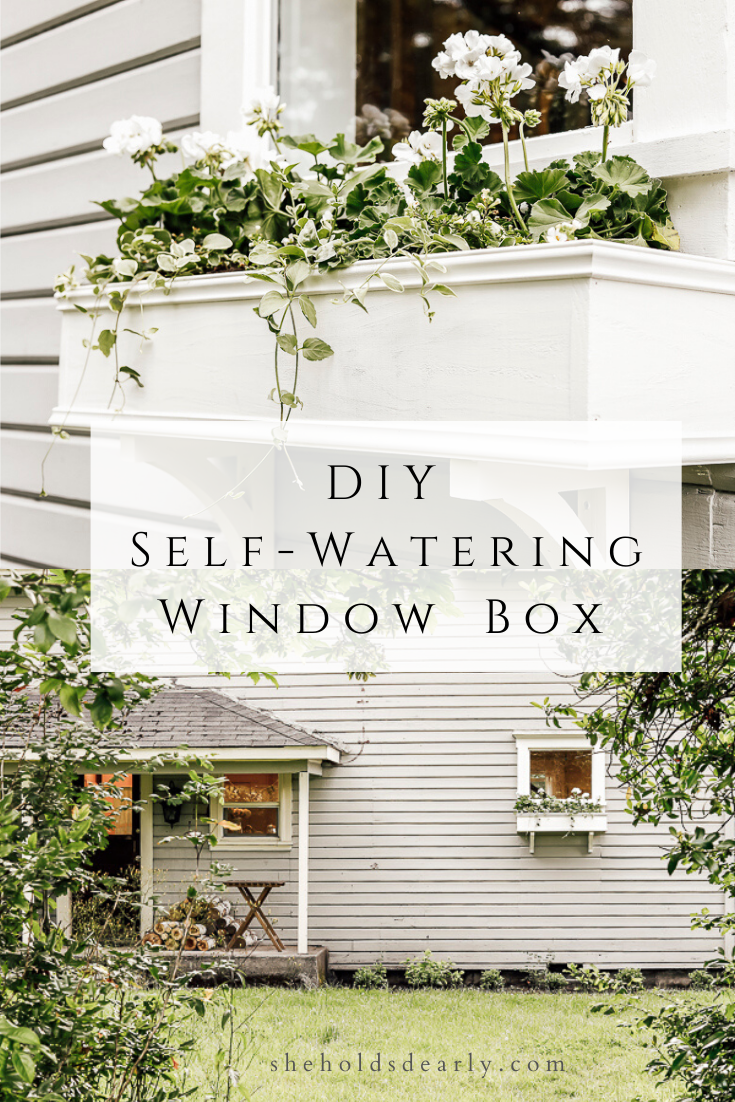 DIY Self Watering Window Box by sheholdsdearly.com