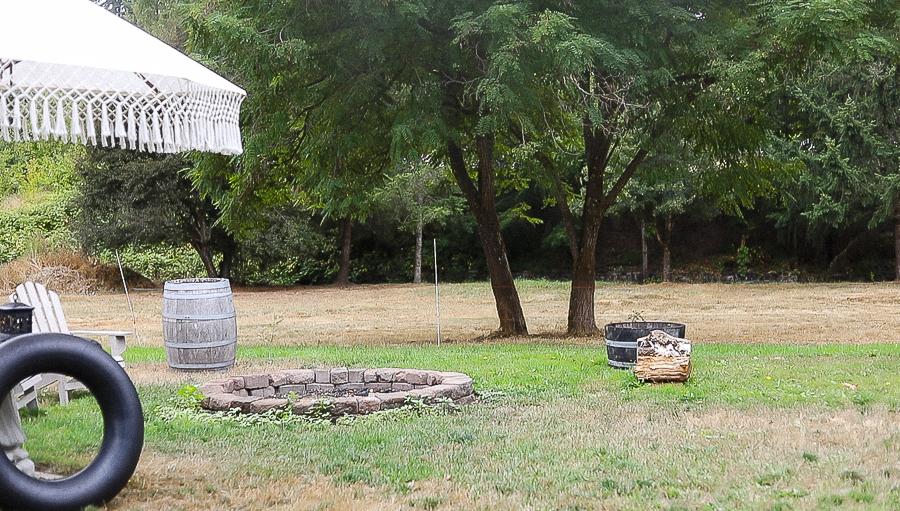 Seasonal Farmlife Tour by sheholdsdearly.com
