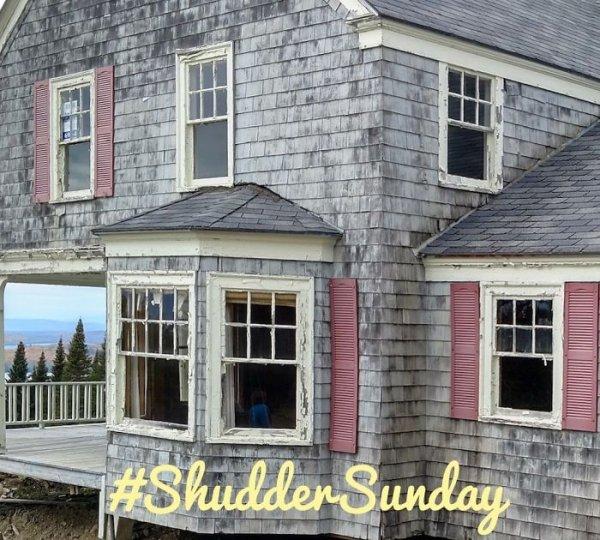 Shutter Don'ts by sheholdsdearly.com